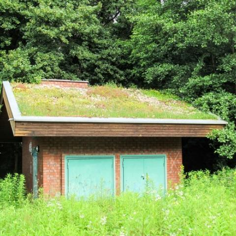 Zelená střecha